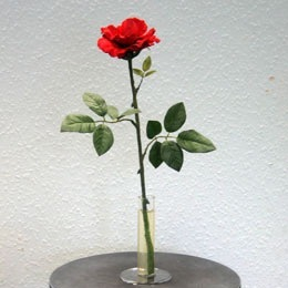 Magic Rose Prop - Beauty and the Beast 2008